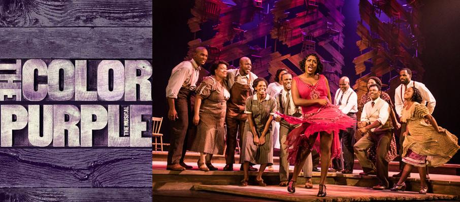 The Color Purple at Ziff Opera House