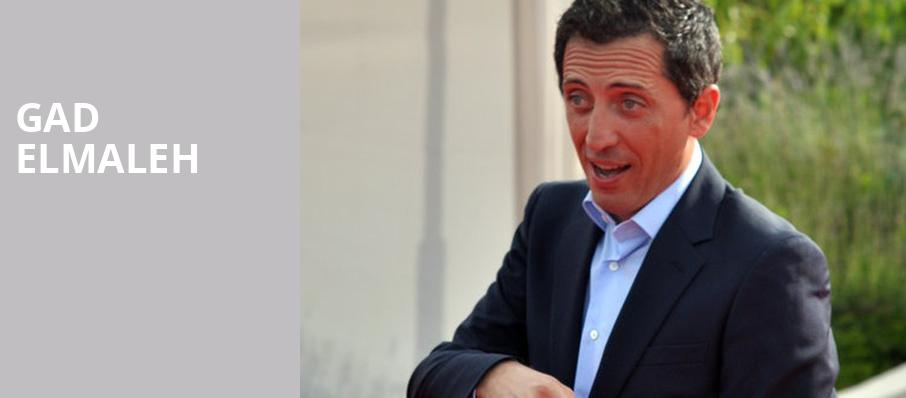 Gad Elmaleh, Knight Concert Hall, Miami